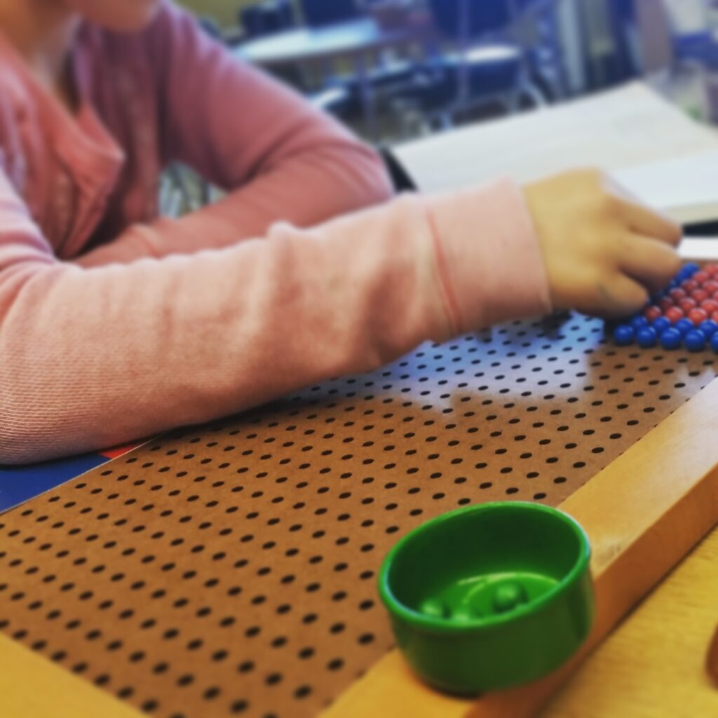 Montessori Parent Education Blog Grumble Services Blog elementary Montessori materials and learning resources