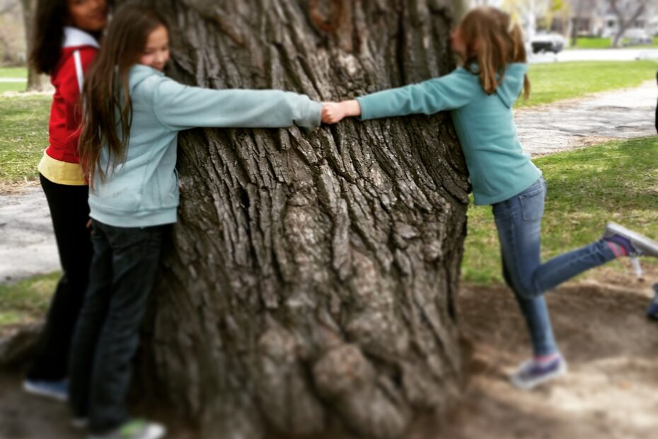 Tree huggers Outdoor Learning Blog Grumble Services Blog elementary Montessori materials and learning resources
