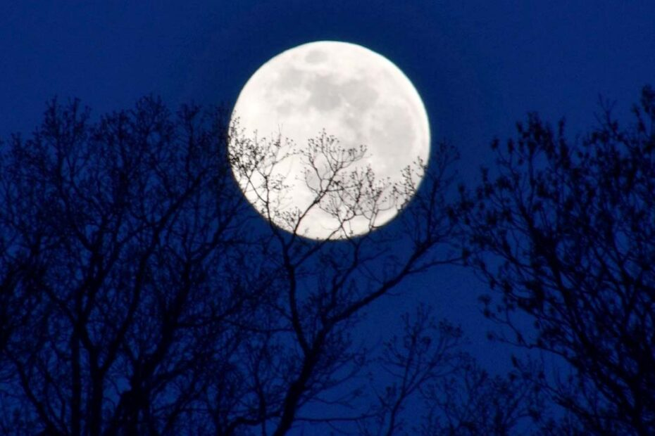 Full Moon Blog Grumble Services Blog elementary Montessori materials and learning resources
